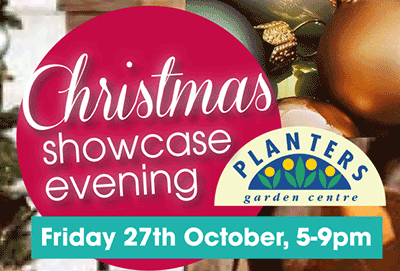 Christmas Showcase Evening