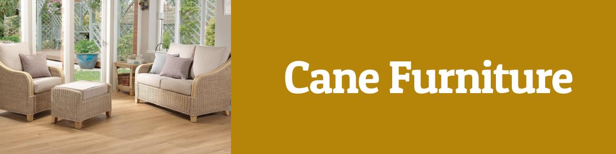 PGC-CANE-BANNER-WEB